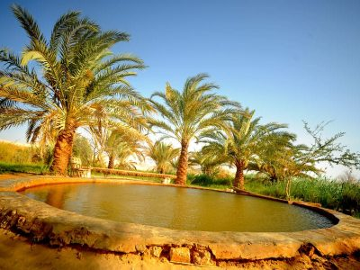 https://travel2egypt.org/wp-content/uploads/2019/01/bahariya-oasis-e1546492697573.jpg
