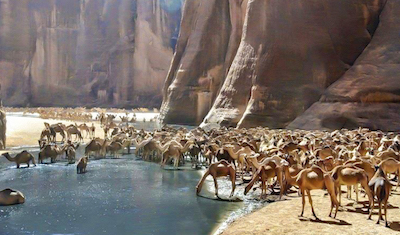 https://travel2egypt.org/wp-content/uploads/2019/04/Valley-of-the-Camels-wide_e6f5e_lg.jpg